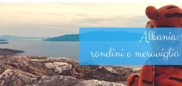 Albania: rondini e meraviglia