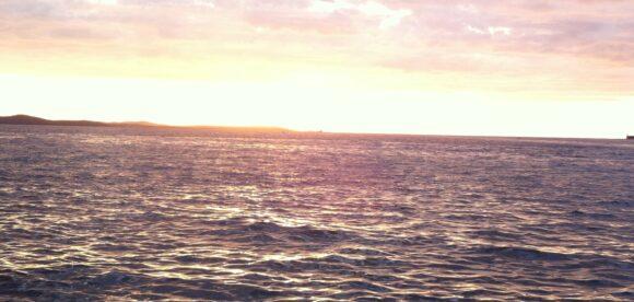 Zara: La melodia del mare
